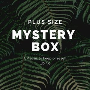 Other - Plus Size 5 Piece Mystery Box. Sizes 1X-3X